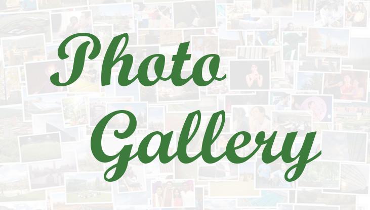 photogallerylight